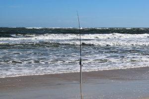 canne da pesca surfcasting 1