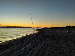 surfcasting sud Informazioni e Articoli per la pesca