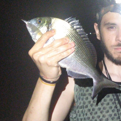 pesca all'orata